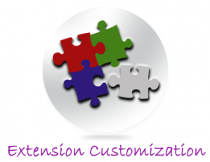 Extension Customization