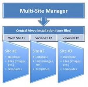 Multi Website Upgrade
