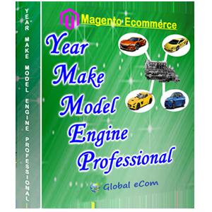 Year Make Model Engine Professional